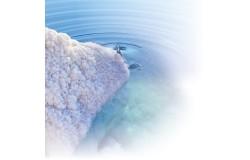 ΒΙΟΛΟΓΙΚΑ ΜΕΤΑΛΛΙΚΑ ΣΤΟΙΧΕΙΑ ΑΠΟ ΤΗ ΝΕΚΡΑ ΘΑΛΑΣΣΑ: ΤΟ ΝΕΡΟ ΤΗΣ ΥΓΕΙΑΣ