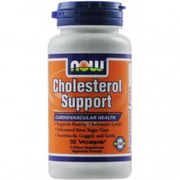 CHOLESTEROL SUPPORT NOW FOODS 90vcaps