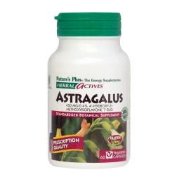 ASTRAGALUS NATURE'S PLUS 450mg 60caps