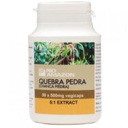 QUEBRA PEDRA (CHANCA PIEDRA) - (ΦΥΤΟΚΑΨΟΥΛΕΣ ΜΕ ΕΚΧΥΛΙΣΜΑ QUEBRA PEDRA) RIO AMAZON 500mg 90caps